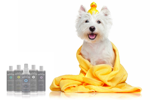 Gallipots Dog Grooming with For All Dogkind