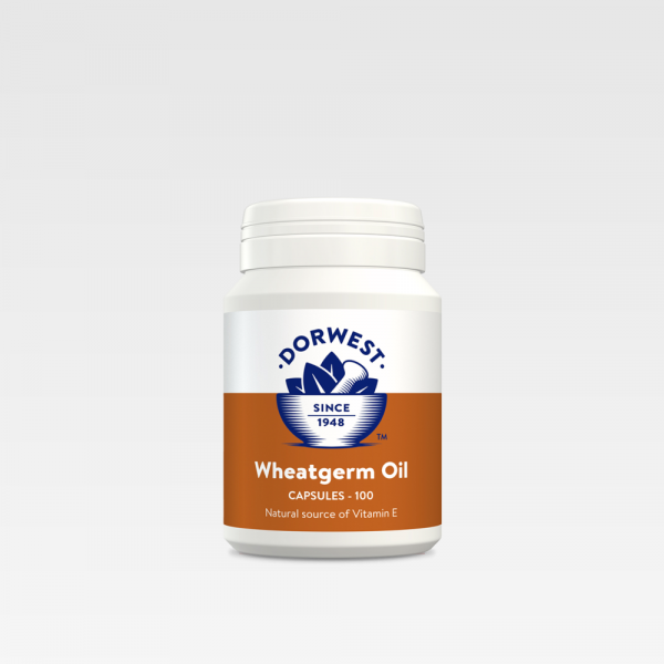 A Great Source Of Vitamin E Dorwest Wheatgerm Oil