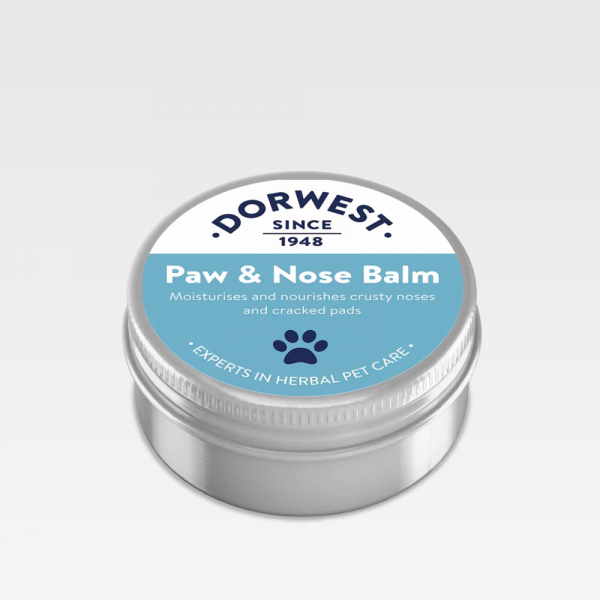 Pawfect Treatment For Dogs Sore Paws