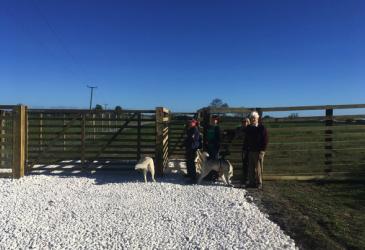 Molescroft Dog Field 1