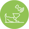 Dog Activities From Gallipots
